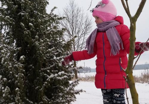 Žiemos blogas: gražios žiemos dienos..:) :)