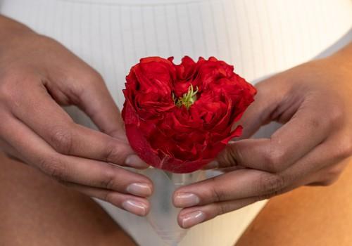 Intymi higiena menstruacijų metų: ar nežinojimas gali pakenkti?