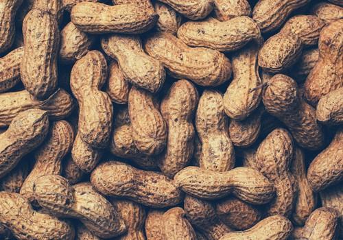 Kodėl atsiranda alergija riešutams?
