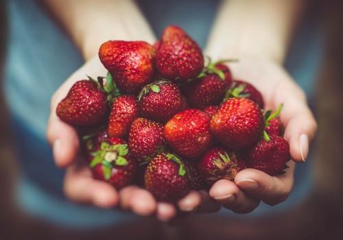 Braškės padeda kovoti su inkštirais, vyšnios saugo odą nuo oksidacinės pažaidos