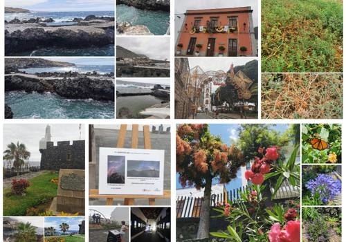 Vasaros gidas: Garachico miestelio grožybės