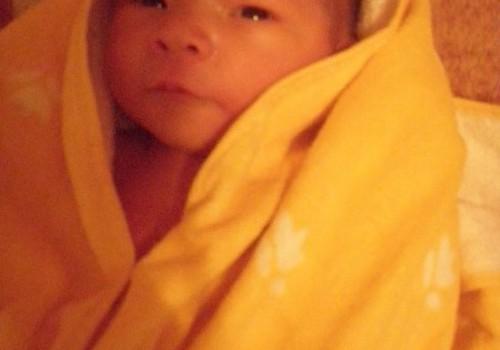 Mano kruopytės Miglės gimimo istorija