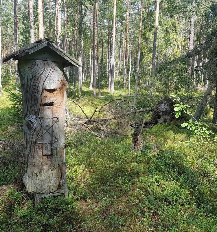 Vasaros gidas: Drevinės bitininkystės pažintinis takas