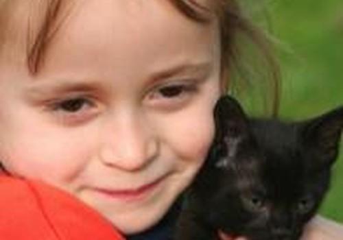 Vaikas arba katė, o gal abu?