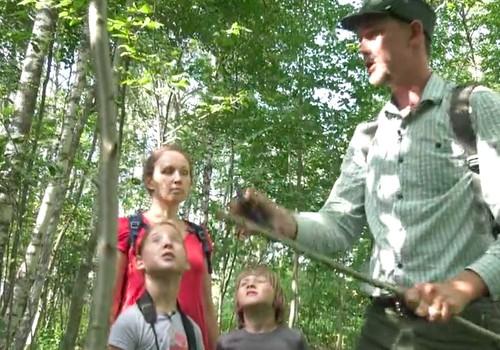 VIDEO: Kaip pasiruošti žygiui į mišką?