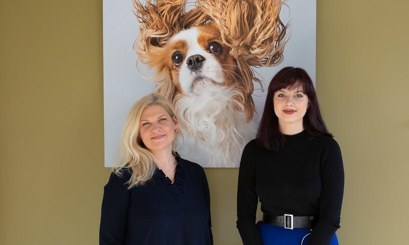Lietuvių projekte, skirtame padėti sergantiems vaikams - šunys, 3D ir papildyta realybė