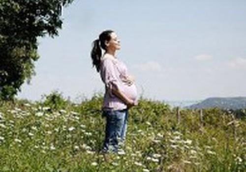Ar dirbote paskutiniais nėštumo mėnesiais?