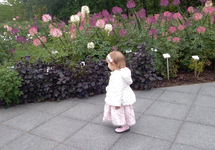 Vasaros gidas: kelionė į Kauną