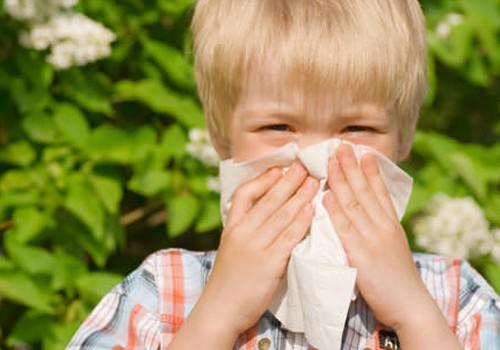 7 būdai sumažinti sezoninės alergijos simptomus