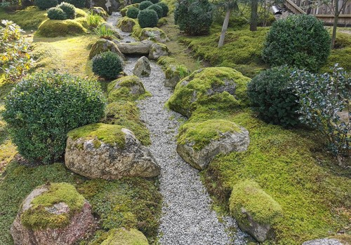 Japonų sodas