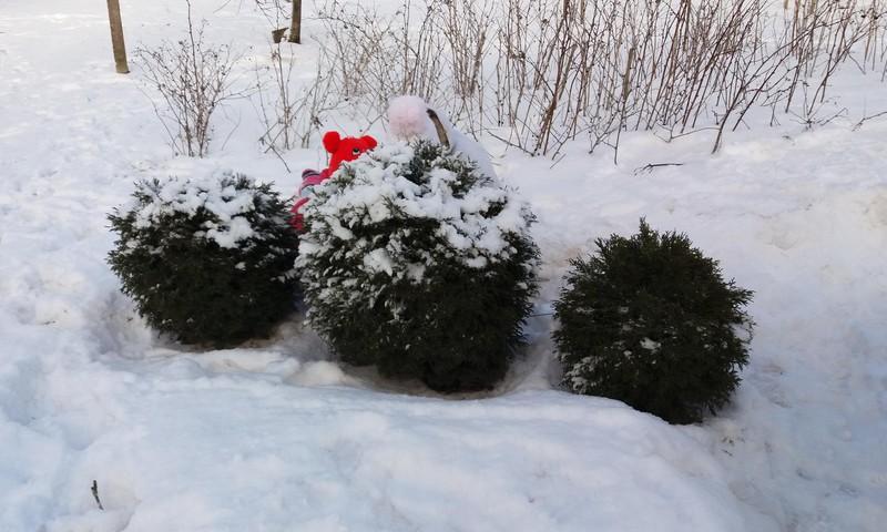 Žiemos ritmu: smagi žiemos dalis :)