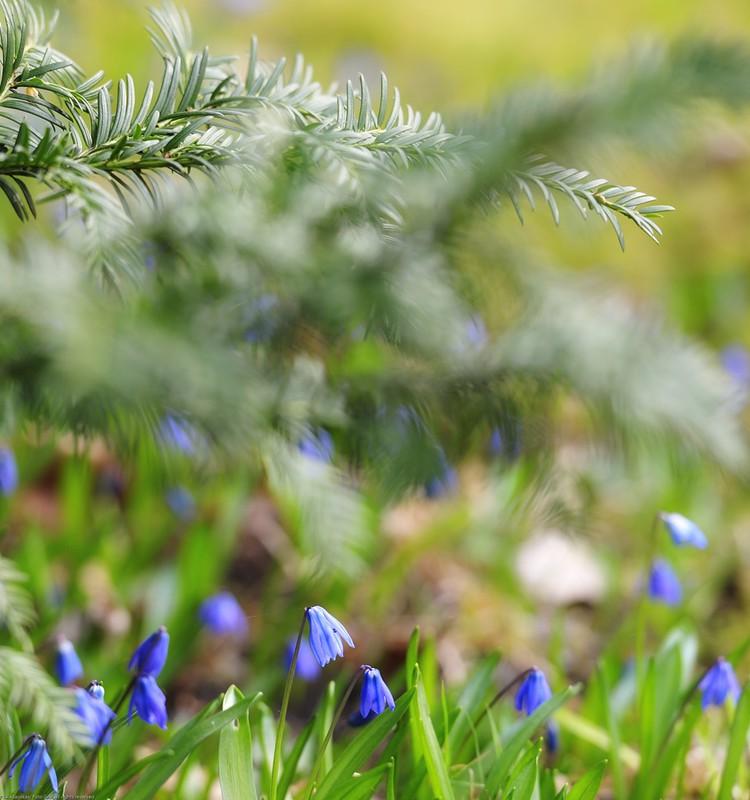 Pavasario blogas: Pro Biotic testavimas ir šylantys orai