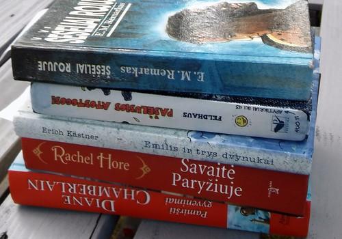 """Apibendrinant skaitymo iššūkį"""" Vasara su knyga"""""""