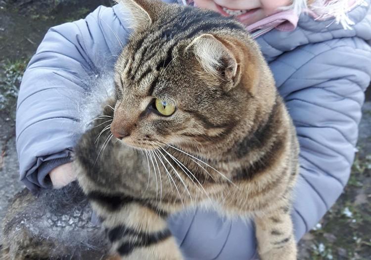 Augustės dienoraštis: profesija - katinas arba...
