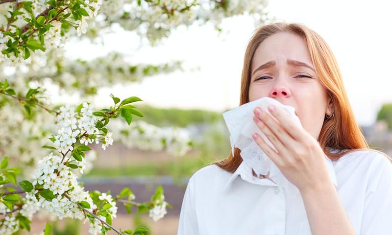 Beveik 60 proc. sergančiųjų sezoninę alergiją gydosi vaistais, neieškodami priežasčių
