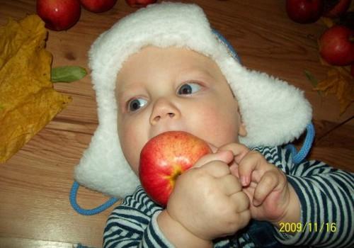 Augustino pirmas kietas maistas - naminis obuolys