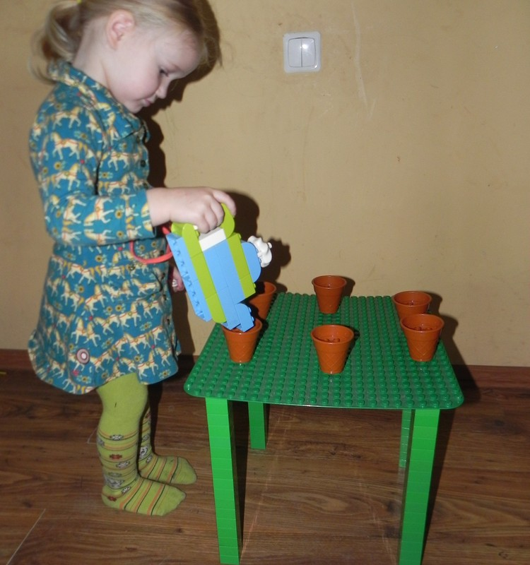Doroteja- arbatos vireja