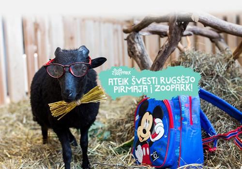 Konkursas Facebooke: Pasidalink rugsėjo 1-osios akimirkomis ir laimėk pakvietimą į Zoopark.lt