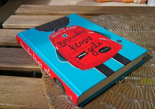 """Knyga """"Berniukas klasės gale"""""""