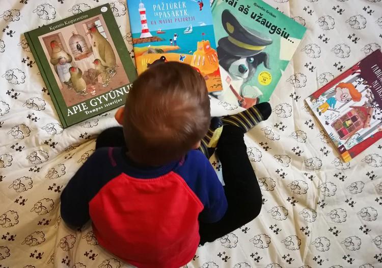 Knygų lietus - dovana darželinukui