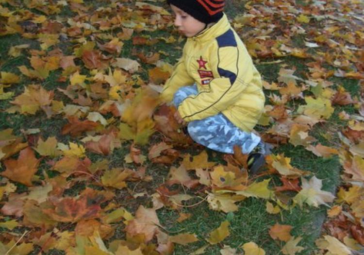 Airidas negali suprasti, kodėl tie lapai tokie spalvoti...