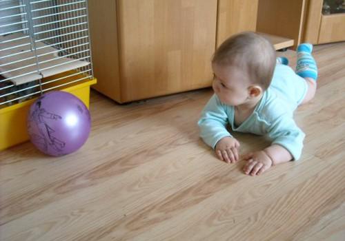 Paskatinimas judėti - žaidimai su kamuoliu