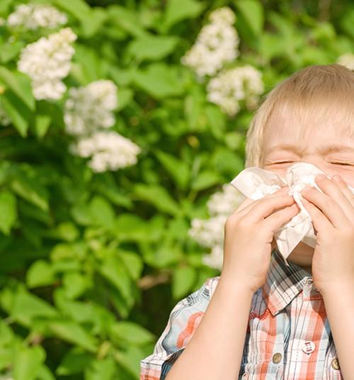 Alerginė sloga: kaip atskirti nuo įprastos?