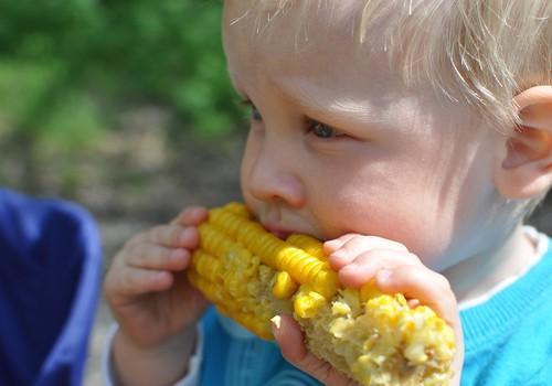 Kaip įkalbėti vaikus valgyti daugiau daržovių?