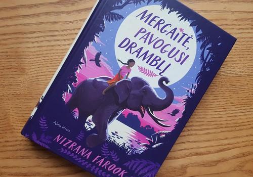 Knyga apie mergaitę maištininkę