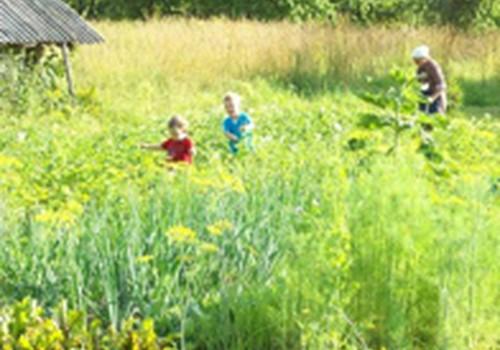 Smagios atostogėlės kaime su prosenele