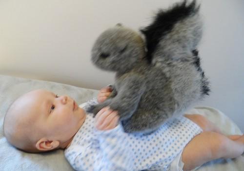 SUPER MAŽYLIS: 3 mėnuo - Hubertas liečia žaisliukus, aš liečiu Hubertą