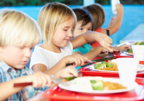 Ar tėveliai patenkinti vaikų maitinimu mokyklose?