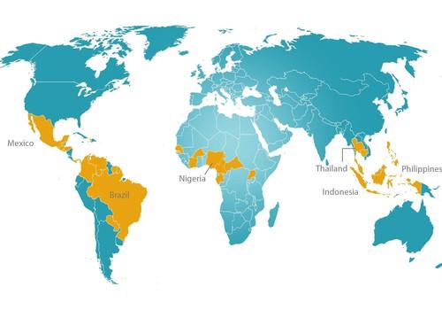 Įrodytas ryšys tarp Zikos infekcijos ir apsigimimų