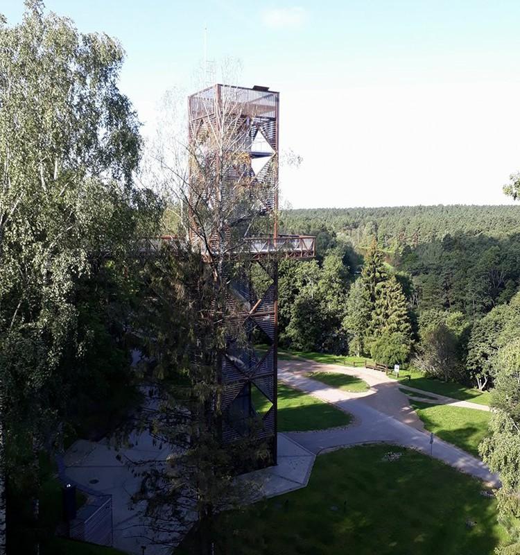 Medžių lajų takas ir kitos pramogos Anykščiuose