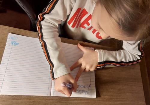 """Augustės dienoraštis: kaip pirmokei sekasi """"krimsti"""" mokslus"""