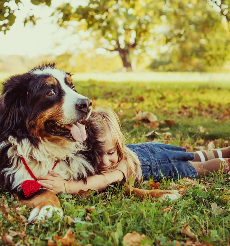 Koks gyvūnas vaikui tinkamiausias?