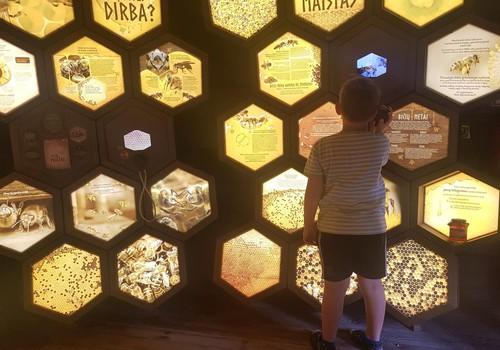 Vasaros gidas: Senovės bitininkystės muziejus