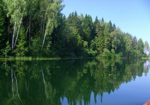 Mūsų poilsis prie ežero: žvejyba ir erotinė fotosesija su lelijom