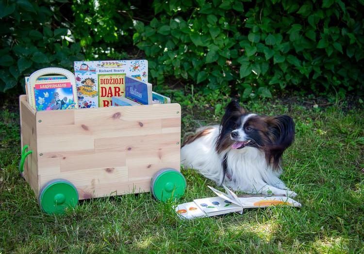 Gyvūnams draugiškos bibliotekos kieme - piknikas su augintiniais