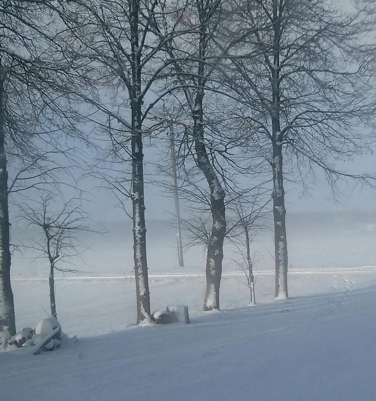 Žiemos blogas: šiltos kojytės :)