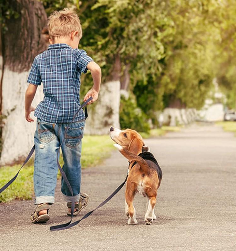 Mama, noriu šuniuko...
