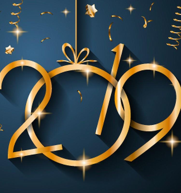 Su Naujaisiais - KIAULĖS metais!