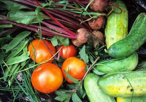 Kokių vitaminų turi kiekviena daržovė?