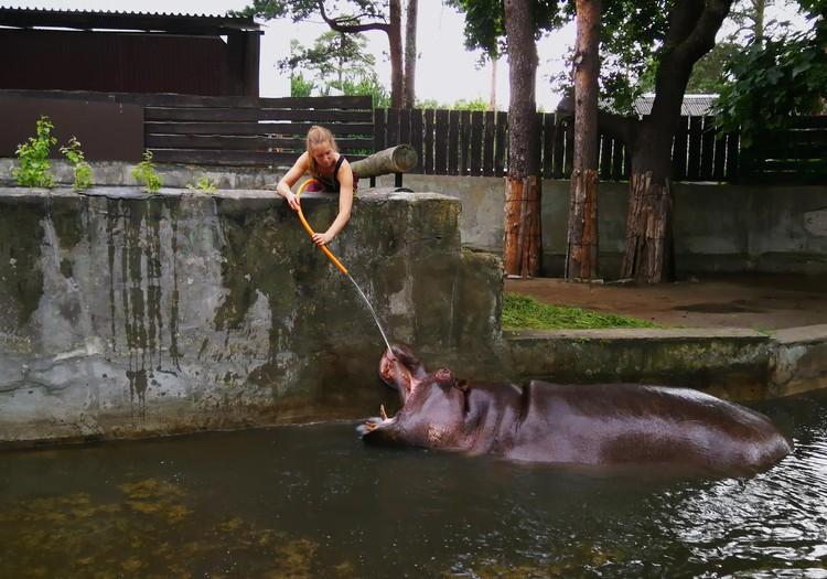 VASAROS GIDAS: Rygos zoo