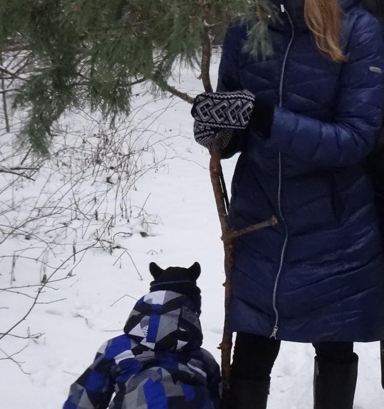 Kaip žiemą žiemos ieškojom