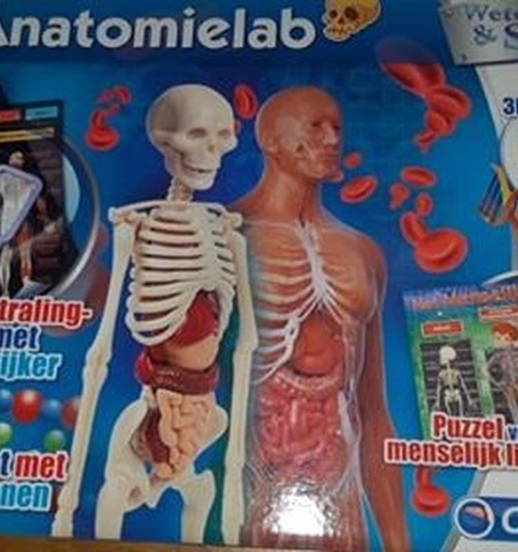 """Augustės dienoraštis: apie žaidimą """"Žmogaus kūnas"""""""