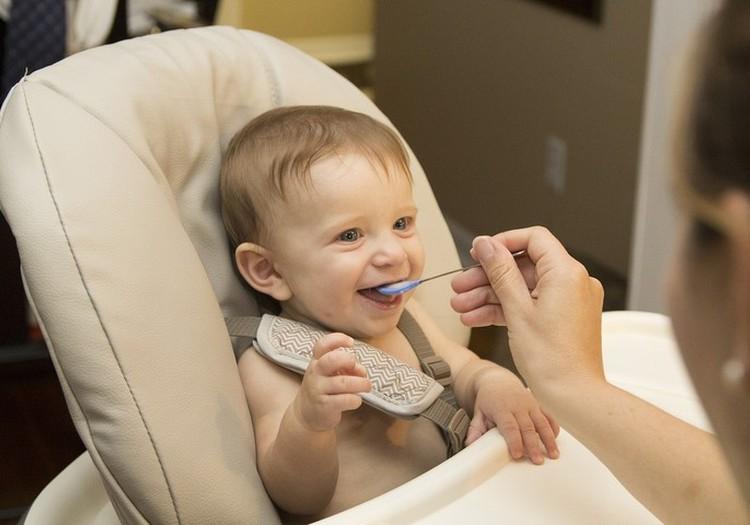 Mamos pataria: sveikų patiekalų receptai mažyliams (2)