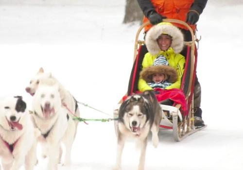 TV Mamyčų klubas 2019 01 20: pasivažinėjimas rogėse su Sibiro haskiais, kūdikio kraitelio rinkimo ypatumai, meno terapija emocijų valdymui