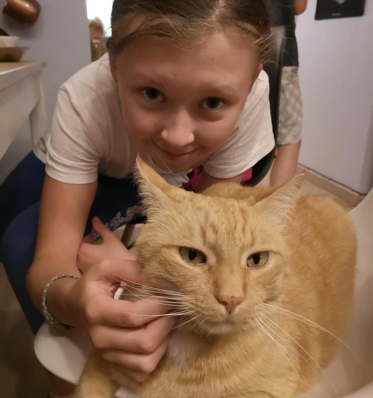 Kačių kavinė - dukrelės įgyvendinta svajonė