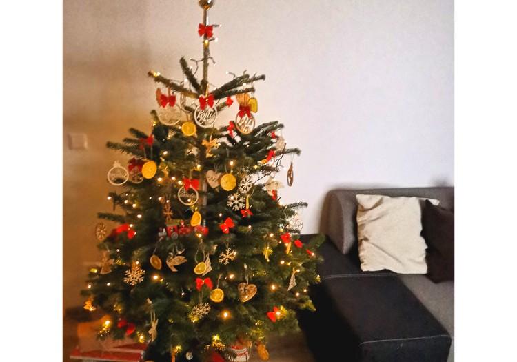 Kalėdų nuotaikos